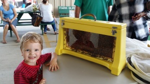 The kids loved watching the bees. This little fella was delighted!